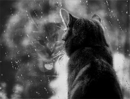 Les jours de pluie (photo: deviantART)